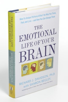 the emotional life of your brain pdf