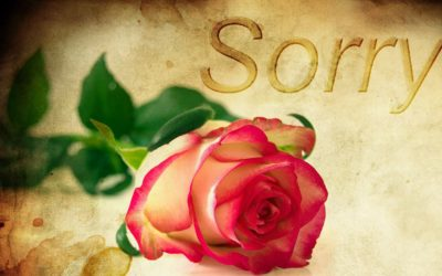 Can you make the gift of saying sorry?