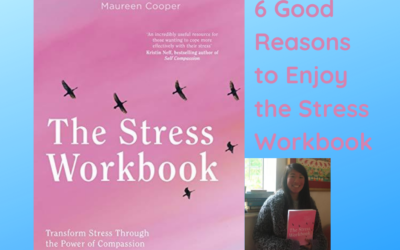 6 Good Reasons to Enjoy the Stress Workbook